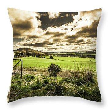 Fields Of Dynamic Range Throw Pillow