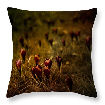 Fields Of Elegance Throw Pillow by Loriental Photography