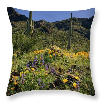 Fields Of Glory Throw Pillow