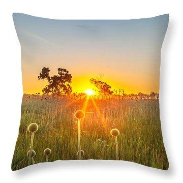 Setting Sun Throw Pillows