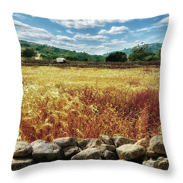Fields Of Gold Throw Pillow by Stephan Grixti