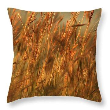 Fields Of Golden Grains Throw Pillow