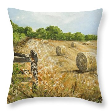 Fields Of Hay Throw Pillow by Marty Garland