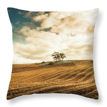 Fields Of Tasmanian Agriculture Throw Pillow