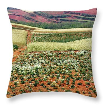 Fields Of The Redlands - 2 Throw Pillow