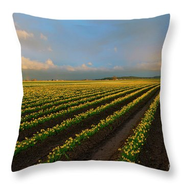 Throw Pillow featuring the photograph Fields Of Yellow by Mike Dawson