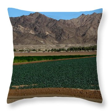 Fields Of Yuma Throw Pillow by Greg Patzer