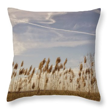 Fields O'grain Throw Pillow