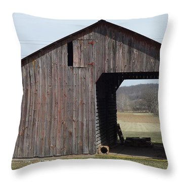 Fieldshed Throw Pillow