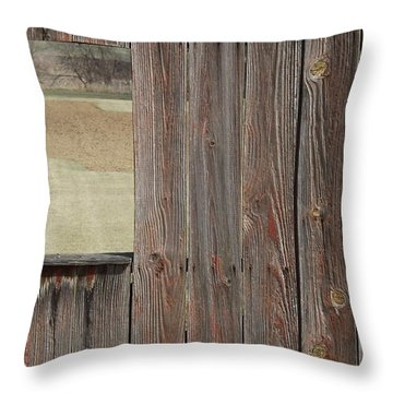 Fieldwindow #1 Throw Pillow