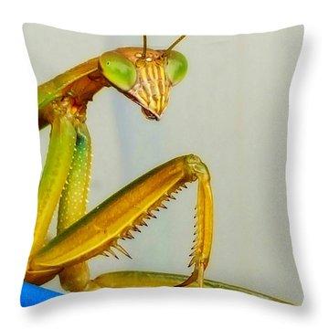Fierce Lady Throw Pillow