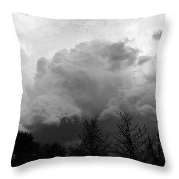 Fierce  Throw Pillow by Teresa Schomig