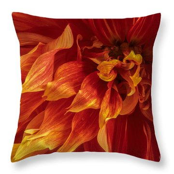 Fiery Dahlia Throw Pillow