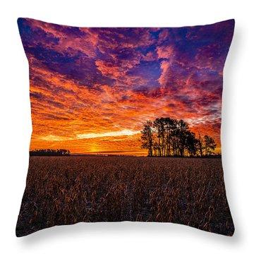 Fiery Dawn At Center Grove Throw Pillow
