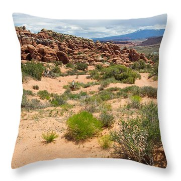 Fiery Furnace Landscape Throw Pillow by Aaron Spong