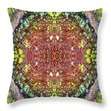 Fifth Dimension Throw Pillow