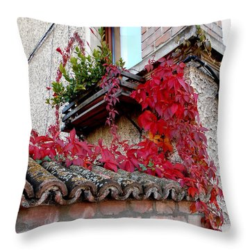 Fifty Shades Of Autumn - 12. Throw Pillow