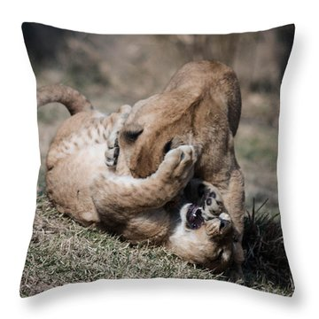 Throw Pillow featuring the photograph Fight Cub by Cathy Donohoue
