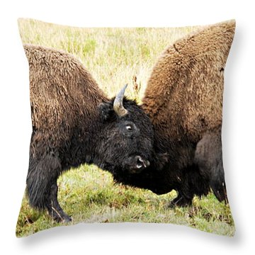 Fight  Throw Pillow by Larry Ricker