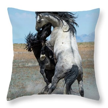 Throw Pillow featuring the photograph Fighting Black And Gray Stallions by Mary Hone