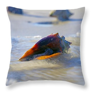 Fighting Conch On Beach Throw Pillow