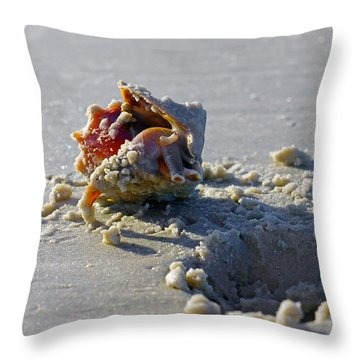 Fighting Conch On The Beach Throw Pillow