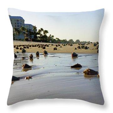 Fighting Conchs At Lowdermilk Park Beach In Naples, Fl  Throw Pillow
