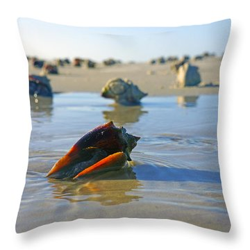 Fighting Conchs On The Sandbar Throw Pillow