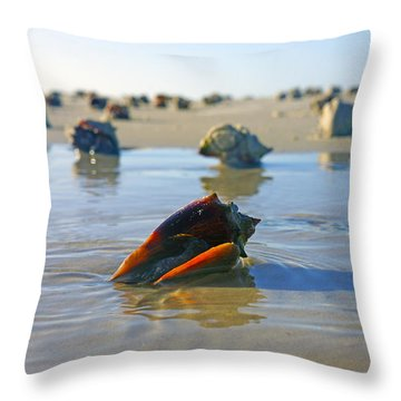 Fighting Conchs On The Sandbar Throw Pillow