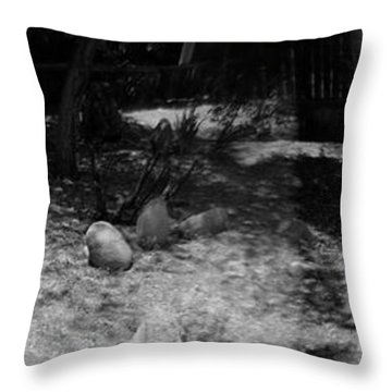 Throw Pillow featuring the photograph Figurative Holga Tryptich 4 by Catherine Sobredo