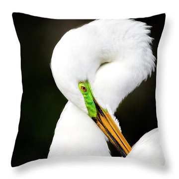 Figure 8 Throw Pillow