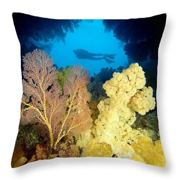 Fiji Underwater Throw Pillow by Dave Fleetham - Printscapes