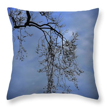 Throw Pillow featuring the photograph Filigree From On High by Skip Willits