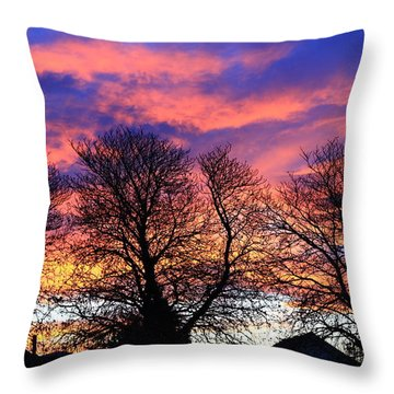 Throw Pillow featuring the painting Filigree Sunset by Nareeta Martin