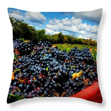 Filling The Red Wagon Throw Pillow