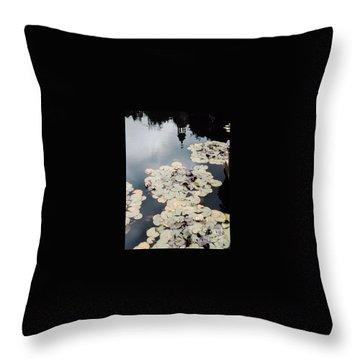 Filoli Reflections Throw Pillow