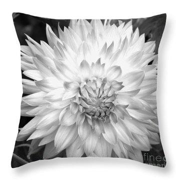 Filter Series 101 Throw Pillow