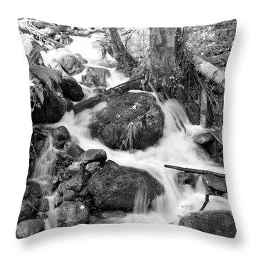 Filter Series 103 Throw Pillow