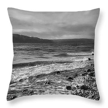 Filter Series 104 Throw Pillow