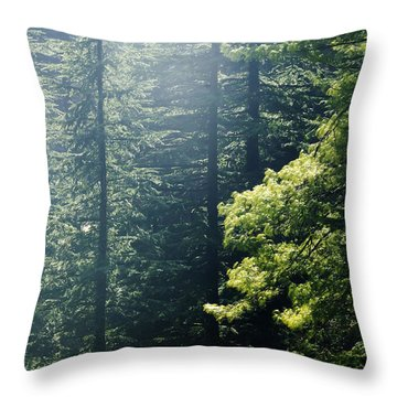 Filtered Light Throw Pillow by Rajiv Chopra