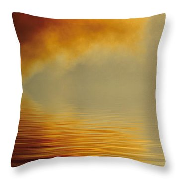 Filtered Sun Throw Pillow by Jerry McElroy