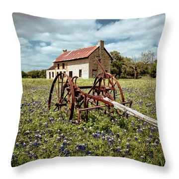 Throw Pillow featuring the photograph Final Resting Place by Linda Unger