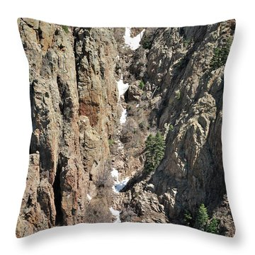 Final Traces Of Snow Throw Pillow