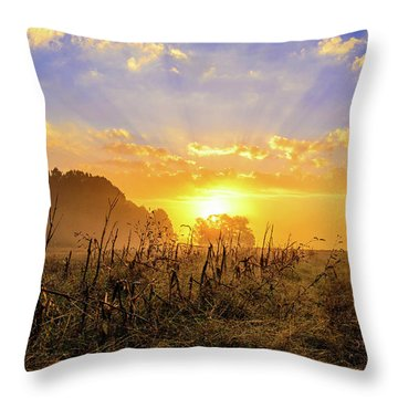 Finale  Throw Pillow