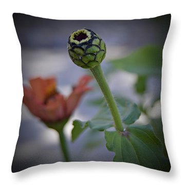 Finality Throw Pillow
