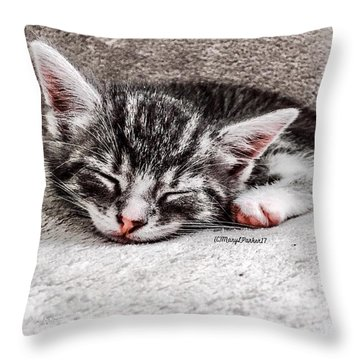 Finally Asleep  Copyright Mary Lee Parker 17  Throw Pillow