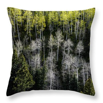 Finally Spring Throw Pillow by The Forests Edge Photography - Diane Sandoval