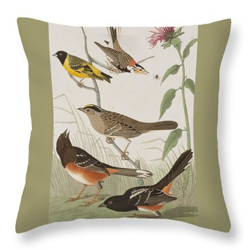 Finches Throw Pillow by John James Audubon