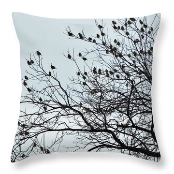 Finches To The Wind Throw Pillow