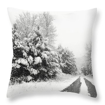 Throw Pillow featuring the photograph Find A Pretty Road by Lori Deiter